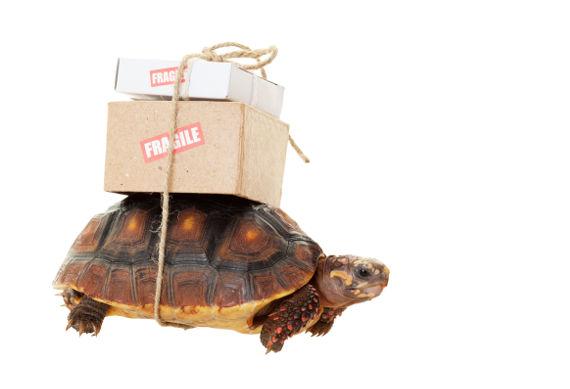 e-commerce-livraison-logistique-2